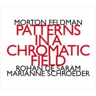『半音階的音場でのパターンズ』 ロハン・デ・サラム、マリアン・シュレーダー(2CD)