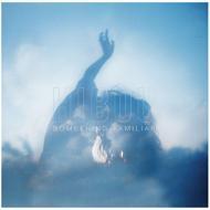 Something Familiar (アナログレコード)