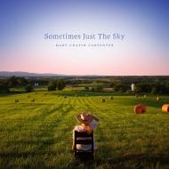 Sometimes Just The Sky (2枚組アナログレコード)