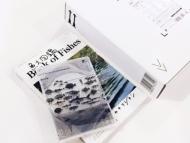 魚図鑑 【完全生産限定プレミアムBOX】(3CD+魚大図鑑)