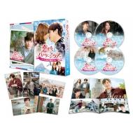 恋するパッケージツアー 〜パリから始まる最高の恋〜DVD-SET2 【139分特典映像DVD付】