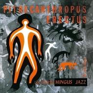 直立猿人 Pithecanthropus Erectus (アナログレコード/Wax Love)