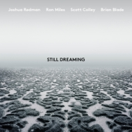 Still Dreaming (feat.Ron Miles, Scott Colley & Brian Blade)(アナログレコード/Nonesuch)