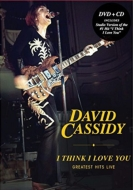 I Think I Love You: Greatest Hits Live (DVD+CD)