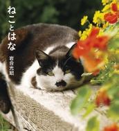 ねことはな IWAGO'S BOOK