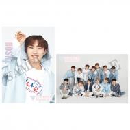 ポストカード2枚セット (HOSHI)/ SEVENTEEN museum 2018