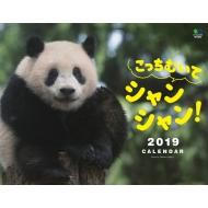 カレンダー2019 こっちむいてシャンシャン! 壁掛けタイプ B4ワイド