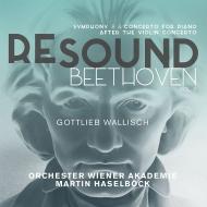 交響曲第8番、ヴァイオリン協奏曲(ピアノ版) マルティン・ハーゼルベック&ウィーン・アカデミー管弦楽団、ゴットリーブ・ヴァリッシュ