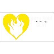 pure soul Anthology (2CD+Blu-ray)