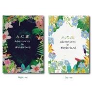 Repackege Album: A.C.E Adventures in Wonderland (ランダムカバー・バージョン)