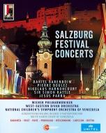 『ザルツブルク音楽祭コンサート・ボックス 2008-2013』 ラトル、バレンボイム、ブーレーズ、アーノンクール、ウィーン・フィル、他(6BD)