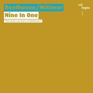 Nine in one〜ベートーヴェンの交響曲を素材としたコラージュ作品