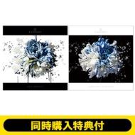 【2タイトル同時購入セット特典付き】 AN ETERNITY +FLOWER OF ROMANCE