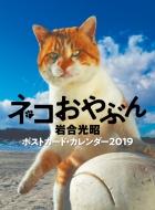 2019ポストカードカレンダー ネコおやぶん 卓上