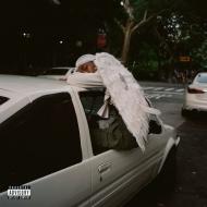 Negro Swan (2枚組アナログレコード/Domino/4thアルバム)