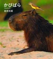 かぴばら IWAGO'S BOOK
