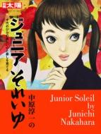 中原淳一のジュニアそれいゆ 十代のひとの美しい心と暮しを育てる 別冊太陽 日本のこころ