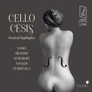 Cello Cesis Festival Highlights: Yllonen Brunello(Vc)Sinfonietta Riga