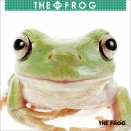 (ミニ)the Frog / 2019年カレンダー
