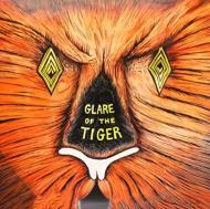 Glare Of The Tiger