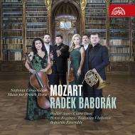 ホルン協奏曲集、12のホルン二重奏曲、他 ラデク・バボラーク、バボラーク・アンサンブル、ラドヴァン・ヴラトコヴィチ、他(2CD)