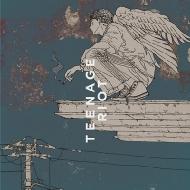 Flamingo / TEENAGE RIOT 【ティーンエイジ盤 初回限定盤】(CD+サイコロ)