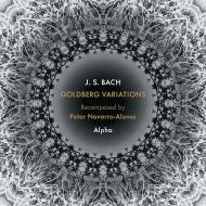 ゴルトベルク変奏曲〜ナヴァロ=アロンソ・リコンポーズド アルファ(リコーダー、サックス、打楽器)
