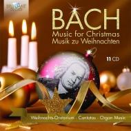 バッハ(1685-1750)/Weihnachts-oratorium Christmas Canatas: Flamig / Dresden Po Dresdner Leusink / Nethe
