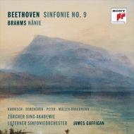 Beethoven Symphony No.9, Brahms Nanie : James Gaffigan / Lucerne Symphony Orchestra, Harnisch, Semenchuk, M.Peter, Muller-Brachmann (2CD)