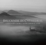 ブルックナー・イン・カテドラル:ラデク・バボラーク(ホルン)、アレシュ・バールタ(オルガン)、チェコ・ホルン・コーラス (180グラム重量盤レコード/EXTON)
