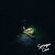 SPRING CAVE e.p.(アナログレコード)