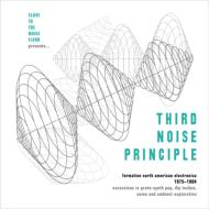 Third Noise Principle: Formative North American Electronica: 1975-1984 (4CD)