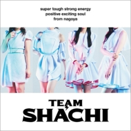 TEAM SHACHI 【positive exciting soul盤 通常盤B】