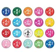 推し缶バッジコレクション チームKII(全20種ランダム)