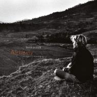 Alchemy: An Index Of Possibilities デラックスエディション (180グラム重量盤レコード/2ndアルバム)