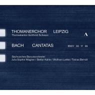 カンタータ第17番、第33番、第99番 ゴットホルト・シュヴァルツ&ライプツィヒ聖トーマス教会少年合唱団、ザクセン・バロックオーケストラ