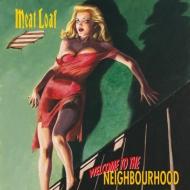 Welcome To The Neighbourhood (2枚組アナログレコード)