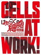 はたらく細胞 特別編 【完全生産限定版】