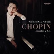 ピアノソナタ第2番、第3番:ニコラス・ヴァン・プーク(ピアノ)(アナログレコード/Gutman)