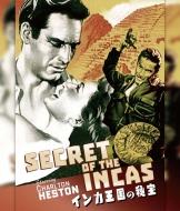 インカ王国の秘宝