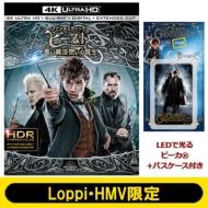 【Loppi・HMV限定】ファンタスティック・ビーストと黒い魔法使いの誕生 <4K ULTRA HD&エクステンデッド版ブルーレイセット>(LEDで光る ピーカ(R)+パスケース付き)
