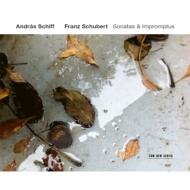 ピアノ・ソナタ第19番、第20番、4つの即興曲Op.90、他 アンドラーシュ・シフ(フォルテピアノ)(2CD)