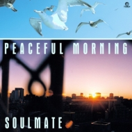 Peaceful Morning【2019 RECORD STORE DAY 限定盤】(7インチシングルレコード)