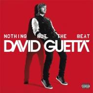 Nothing But The Beat (2枚組アナログレコード)