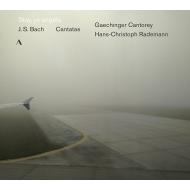 カンタータ第19番、第149番、第158番、第169番 ハンス=クリストフ・ラーデマン&シュトゥットガルト・ゲヒンゲン聖歌隊
