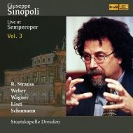 R.シュトラウス:英雄の生涯、死と浄化、シューマン:交響曲第4番、ウェーバー:『オベロン』序曲、他 ジュゼッペ・シノーポリ&シュターツカペレ・ドレスデン(2CD)