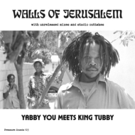 Walls of Jerusalem with unreleased mixes and studio outtakes (2枚組アナログレコード)