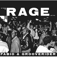 30 Years Of Rage Part 2 (2枚組アナログレコード)