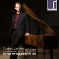 ベートーヴェン:ソナタ第17番『テンペスト』、モーツァルト:ソナタ第15番、他 ヴァレヴァイン・ヴィテン(フォルテピアノ)