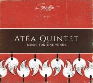 Alwin Concerto for Flute & Wind Instruments, Mozart (Winds)Sonata for 4 Hands : Atea Quintet, etc